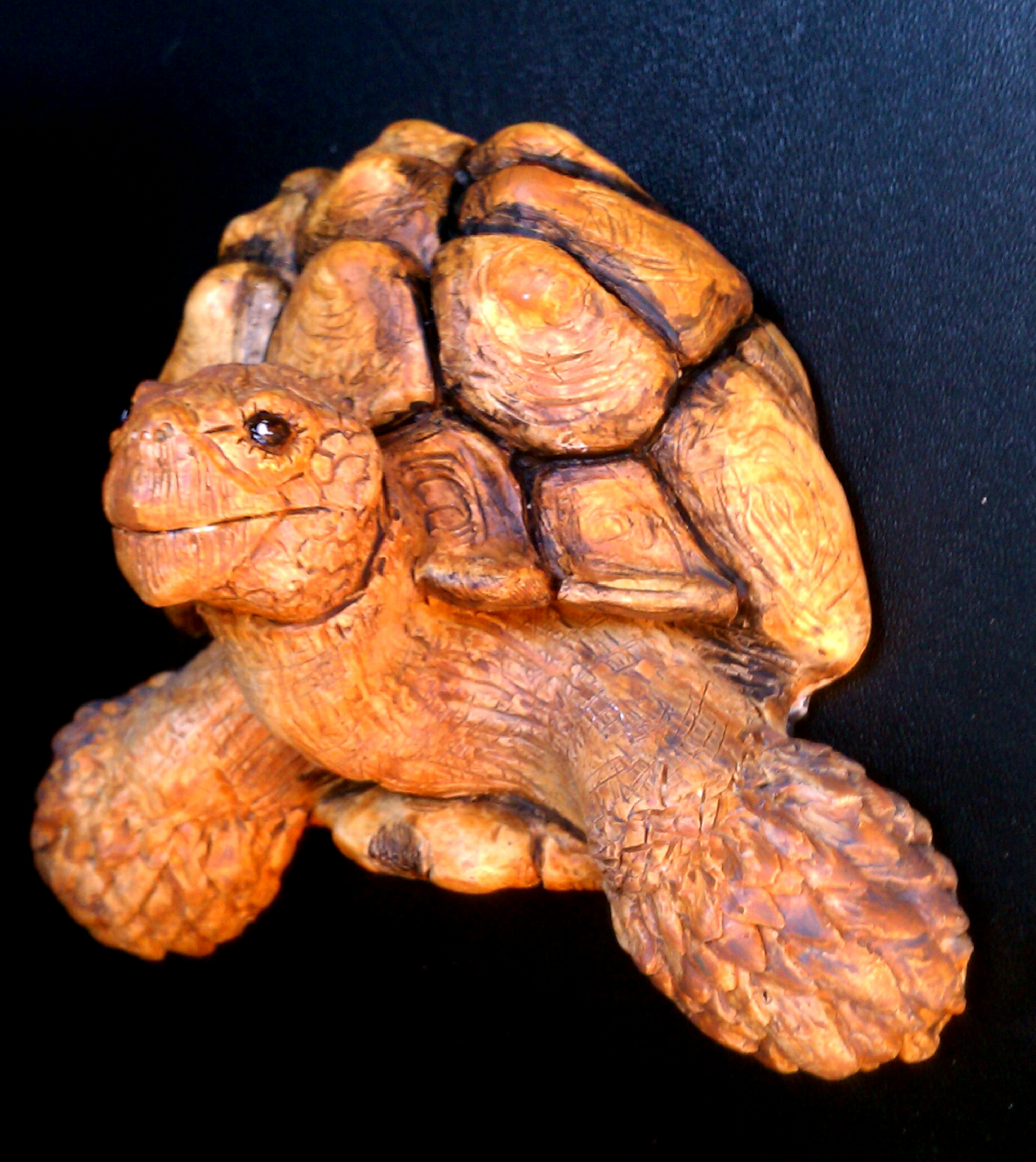 While this magnet is a Sulcata Tortoise, I have dozens of species of animal, including a wide array of reptiles and birds.